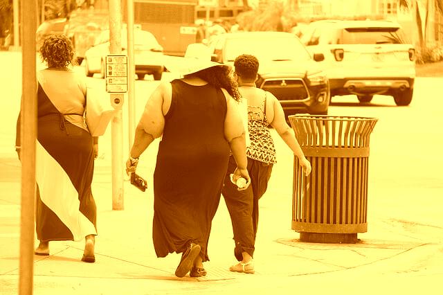 ¿Cuáles son las causas del sobrepeso y la obesidad?
