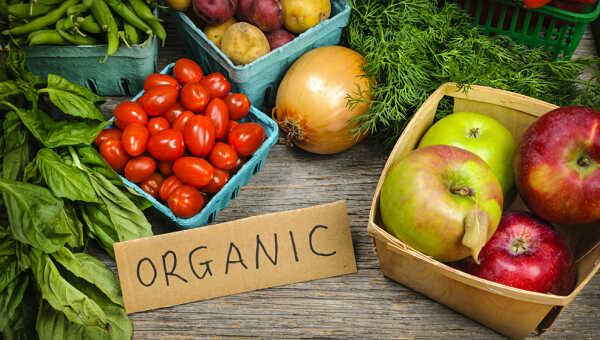 Orgánico Vs No Orgánicos – Una Revision Real en el Valor Nutricional y el Precio